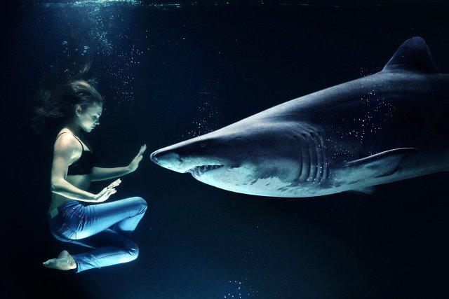 woman and whale