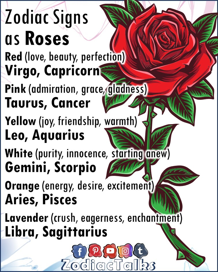 Zodiac Signs as roses