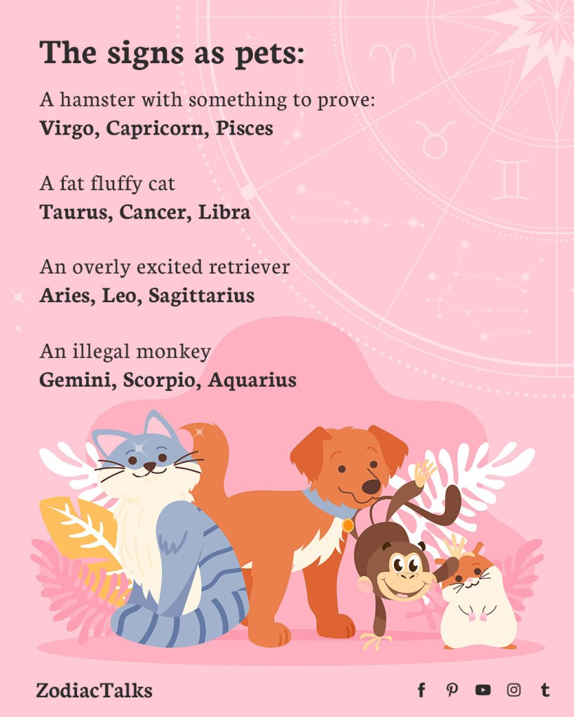 Zodiac Signs as pets